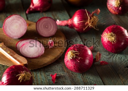 Raw Organic Red Onions on a Background - stock photo