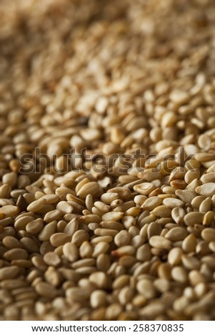 Raw Organic Sesame Seeds in a Bowl - stock photo