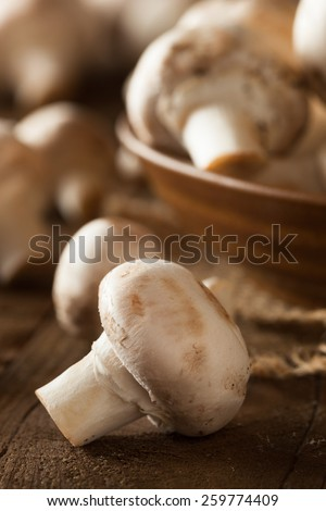 Raw Organic White Mushrooms Ready to Cook With - stock photo
