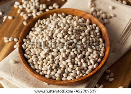 Raw Organic White Navy Beans in a Bowl - stock photo
