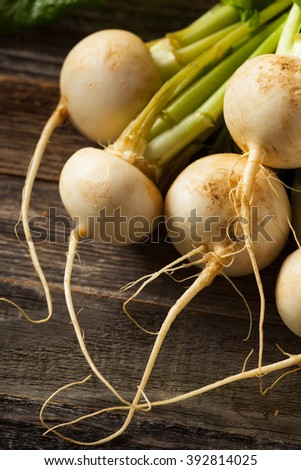 Raw Organic White Radishes with Green Stems - stock photo