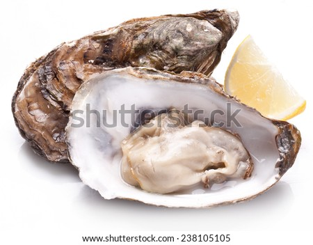 Raw oyster and slice lemon isolated on a whte background. - stock photo