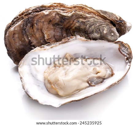 Raw oyster on a whte background. - stock photo