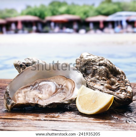 Raw oyster on the old wooden table. Sea beach at the background. - stock photo