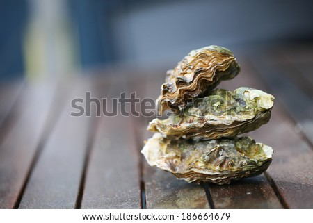Raw oyster on wooden table with a close view - stock photo