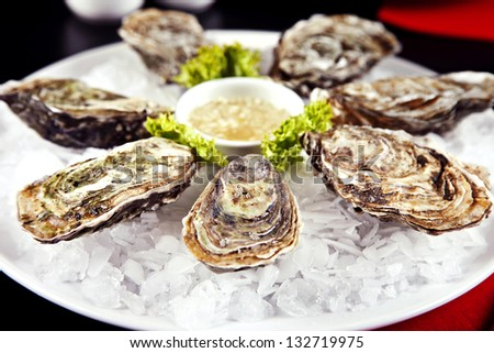 Raw oyster served with sauce on a plate with ice - stock photo