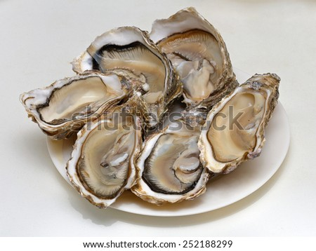 Raw oysters presented open on a plate - stock photo