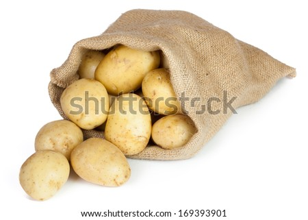 Raw potatoes in burlap bag isolated on white background  - stock photo