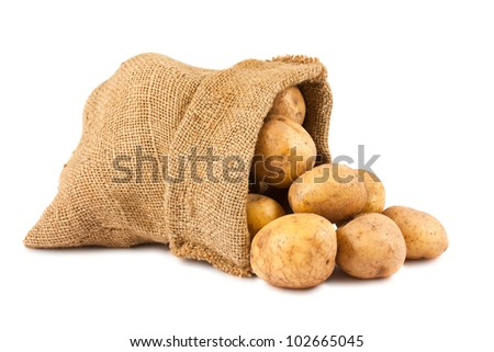 Raw potatoes in burlap sack isolated on white background - stock photo
