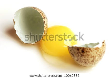 Raw quail egg and eggshell on white background