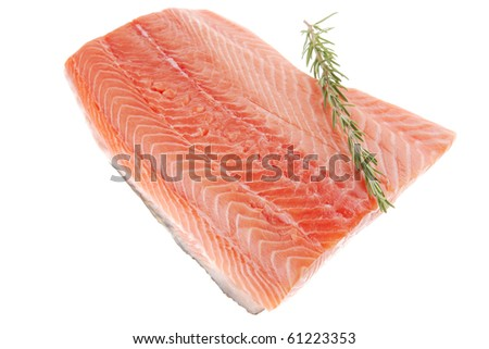 raw salmon fillet isolated with rosemary over white