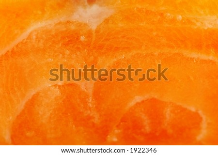 Raw salmon - macro, suited for background - stock photo