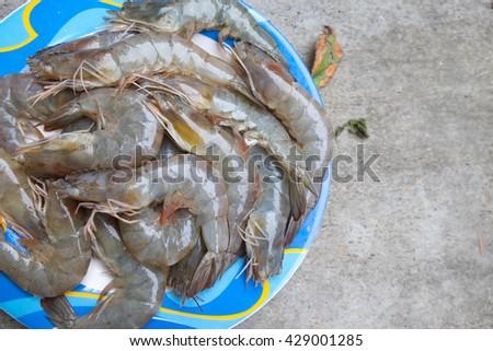 Raw shrimp prepare for cook - stock photo