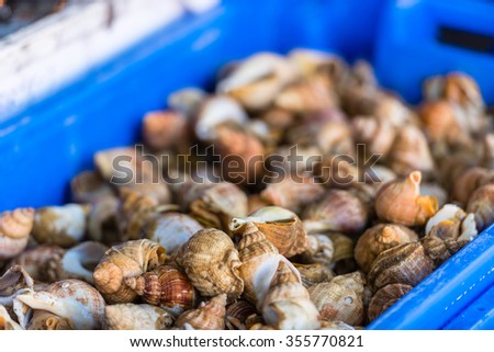 Raw small seashells for meal in a plastic container. The market scene - stock photo