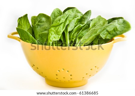 Raw spinach in a strainer. - stock photo