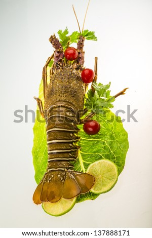 Raw spiny lobsters - stock photo