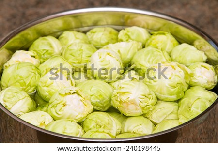 Raw sprouts in a pan of water - stock photo