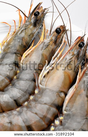Raw tiger prawns on a white plate - stock photo