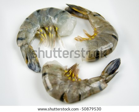 Raw Tiger Shrimp - stock photo