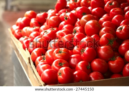 raw tomatoes on market show window - stock photo