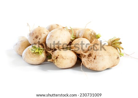 Raw uncooked turnips on white - stock photo
