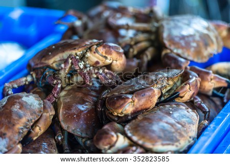 Raw whole crabs on ice. The market scene. Shot with a selective focus - stock photo