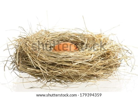 Raw yellow egg in a birds nest with feathers over white background - stock photo