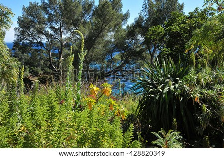 Rayol Canadel sur Mer, France - april 18 2016 : the estate Rayol garden in spring