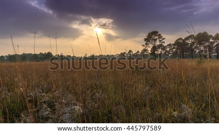 Rays of light shining through the clouds at savanna field - stock photo