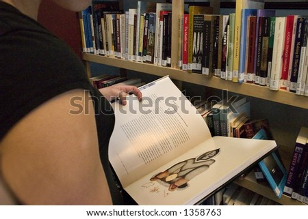 Reading a Book - stock photo