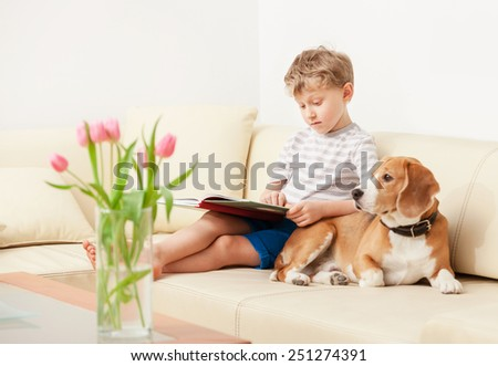 Reading boy with beagle on sofa in cozy home - stock photo