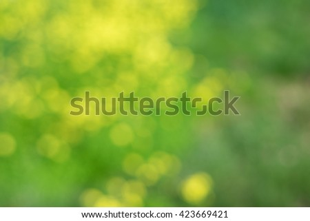 Real bokeh nature background.