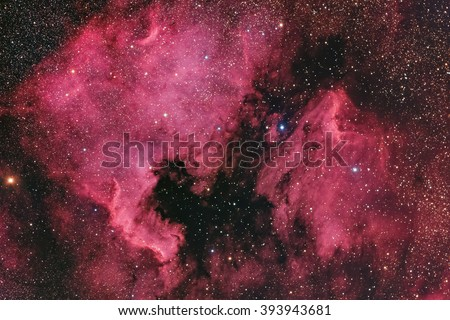 Real Emission Nebulae named North America and Pelican Nebulae in the constellation Cygnus taken with large CCD camera and wide field telescope - stock photo