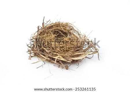 Real empty bird nest on white - stock photo