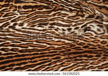 real fur of ocelot - stock photo