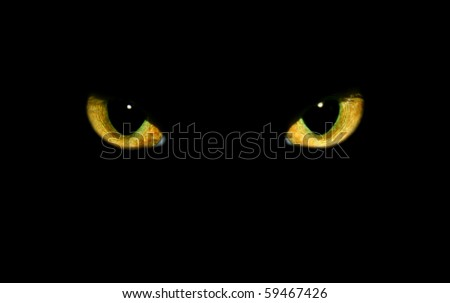 real isolated cat eyes on black background - stock photo
