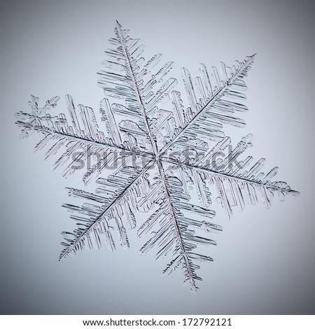 real macro snowflake lying on glass - stock photo