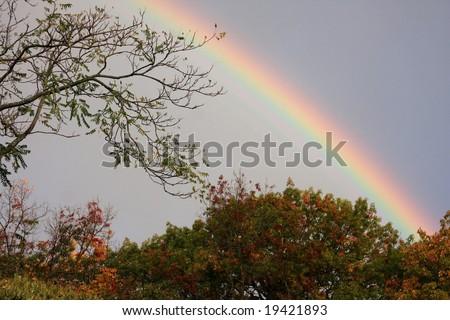 Real Rainbow - stock photo