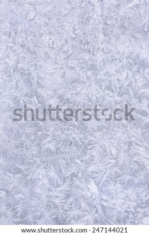Real snowflake background. Beautiful frozen pattern. - stock photo