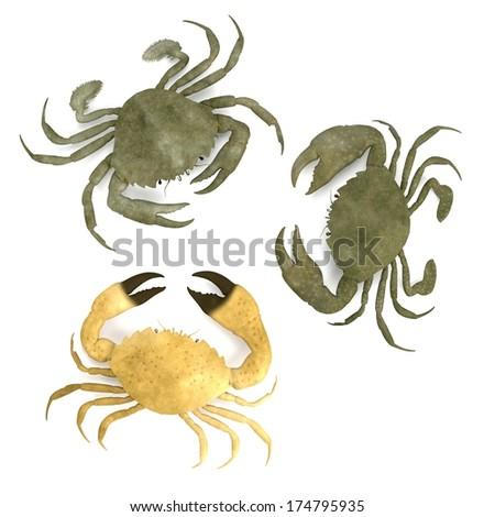 realistic 3d render of crustacean - crabs - stock photo