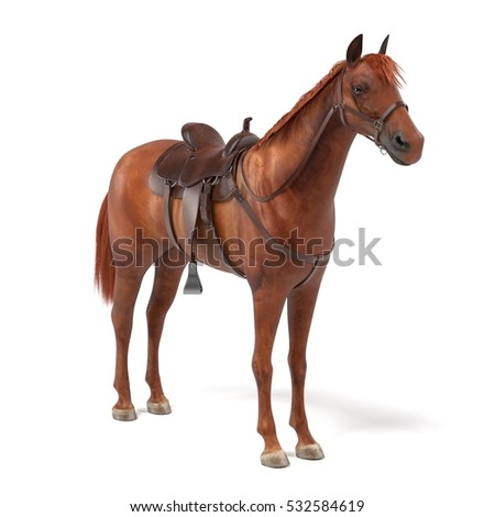 realistic 3d render of horse