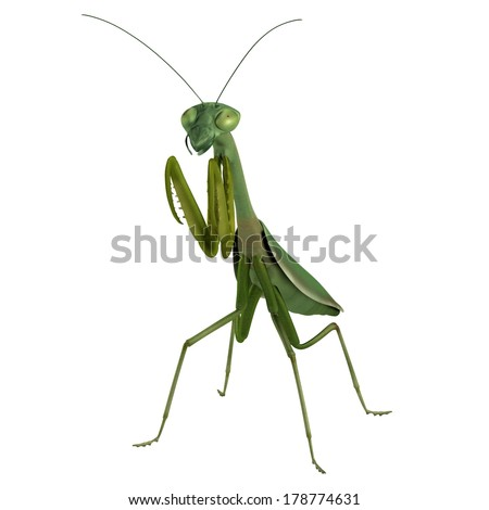 realistic 3d render of mantis - stock photo