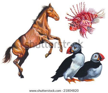 Realistic painting about a horse, a lion fish and two birds - stock photo