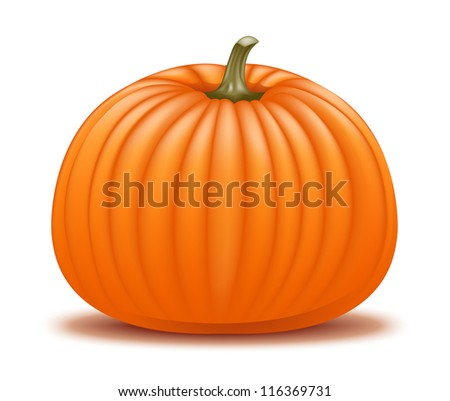 Realistic pumpkin illustration. Raster. - stock photo