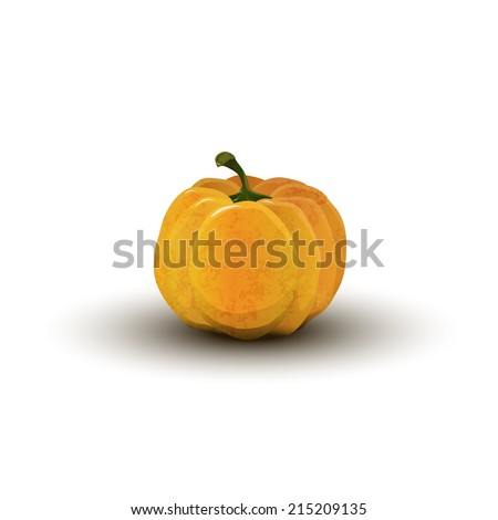 realistic pumpkin on Halloween isolated - stock photo
