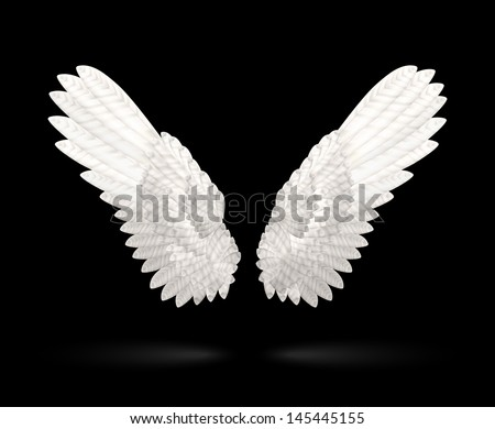 Realistic White Wings on black background. See also vector version - stock photo