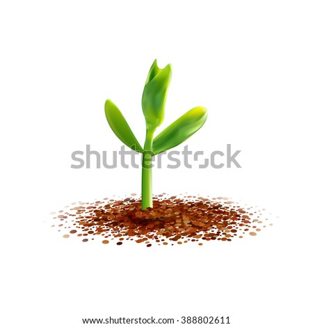 Realistic Young sprout illustration. Spring seedling. Green plant growth at the soil. Agriculture, ecology, new life and spring concept.  - stock photo