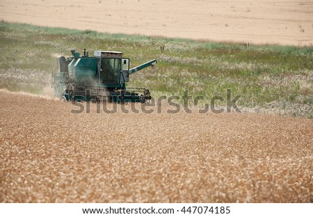 Reaping at the yellow wheat field with combine - stock photo