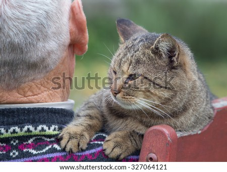 Rear view od senior man sitting on the bench in the park with tabby cat on his shoulder - stock photo