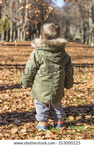 Rear view of a child in autumn